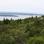 A view at teh top.