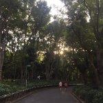 Photo de Shinjuku Chuo Park