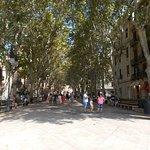 Photo of Passeig des Born
