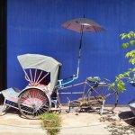 Foto de Cheong Fatt Tze - The Blue Mansion