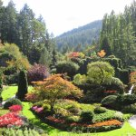 The classic shot of Butchart Gardens