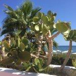 Foto de Hotel Riomar
