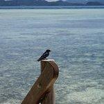 Photo de Sorido Bay Resort