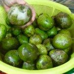 Krodondong fruits -- the fresh juice is refreshing!