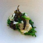 Wild Tasmanian green lipped abalone