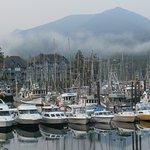 Ocean Mist Guesthouse Foto