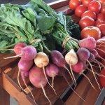 Piedmont Triad Farmers Market Foto