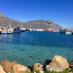 Hout Bay stop