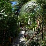 Jardin des Ombrelles