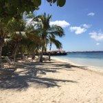 Foto van Harbour Village Beach Club
