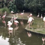 Photo of Auckland Zoo