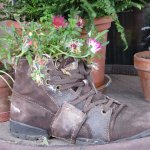 A boot full of stories of Grindelwald