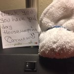 A thank you note and a washcloth bunny from housekeeping.