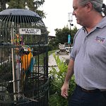 Jack the Parrot with Captain Bob, owner