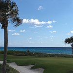 Al Fresco At The Palm Beach Par 3 Golf Course
