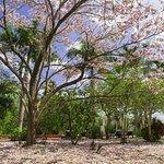 Foto de Hacienda San Jose, a Luxury Collection Hotel