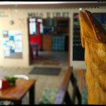 Aquarium Café Foto