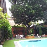 The big tree is lovely. Around the pool is artificial grass