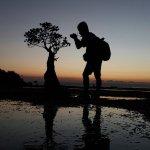 Sao Wisata - Flores Sao Resort Foto