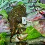 Birinci Kordon Balık Pişiricisi resmi