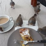 Delicious cake served with afternoon tea!