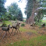 The local wildlife!