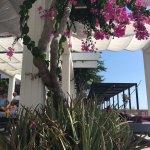 Photo of Almyra Hotel