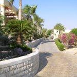 Photo de Coral Beach Resort