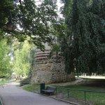 Photo of Sint-Donatuspark