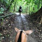 Photo of Vista Los Suenos Horseback Riding