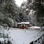 Photo de Cabanas Rincon del Lago