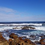 Wild views at the Cape of Good Hope