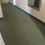Foto de Holiday Inn Express Hotel & Suites Virginia Beach Oceanfront
