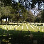 Stones River National Battlefield Cemetary