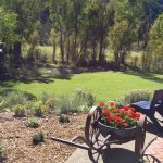 Peaceful and serene garden area