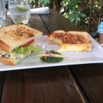 Two half sandwiches: chicken salad and grilled cheese