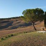 Agriturismo Il Casalino Foto