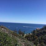 Catalina Island Zip Line Eco Tour Foto