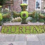 'Durham' Display