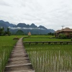 Photo of Vieng Tara Villa