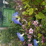 Guiting Guest House gardens