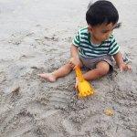Photo of White Sand Beach
