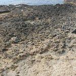 Photo of Olimarotel Gran Camp de Mar