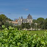 View of Château Les Carrasses from the vineyards