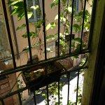 Foto de Residenza Domizia