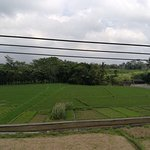 Photo de Balam Bali Villa
