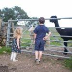 Wheeldon Trees Farm Holiday Cottages Foto