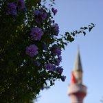 Photo of Sultanahmet District