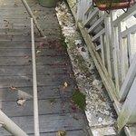 2nd floor guest deck