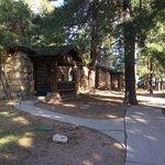 Cabin 304